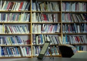 ebooks600shelf (1)